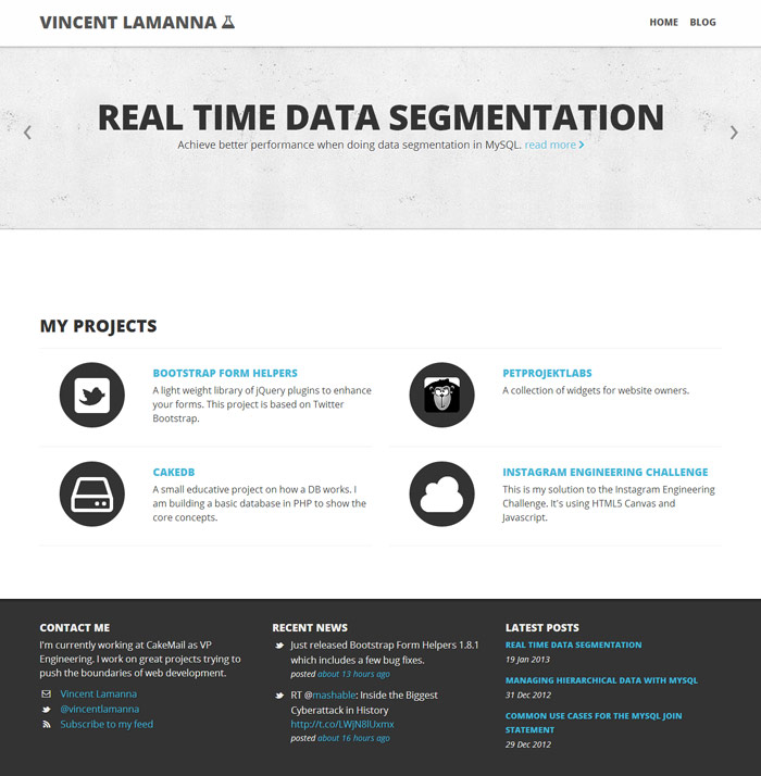 Vincent Lamanna Homepage