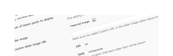 How to create a WordPress Theme Options Page