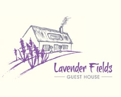 Lavender field guest house