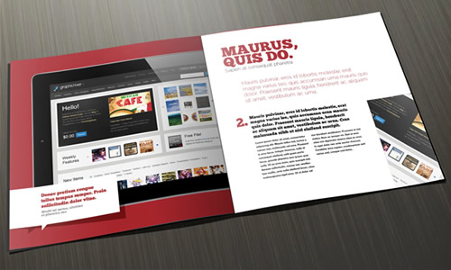 12 Page Case Study Brochure Design