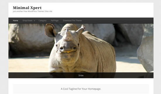 Minimal Xpert Free WordPress Theme